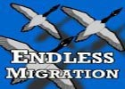 Endless Migration
