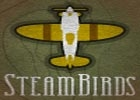 Steam Birds